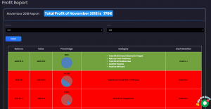 Monthly profit and loss report