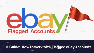 eBay flagged accounts
