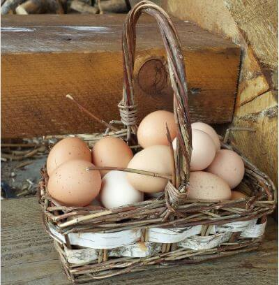 Don't Put All Of Your Eggs In One Basket
