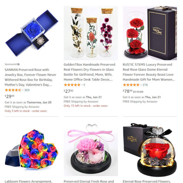 Preserved Flowers dropshipping product