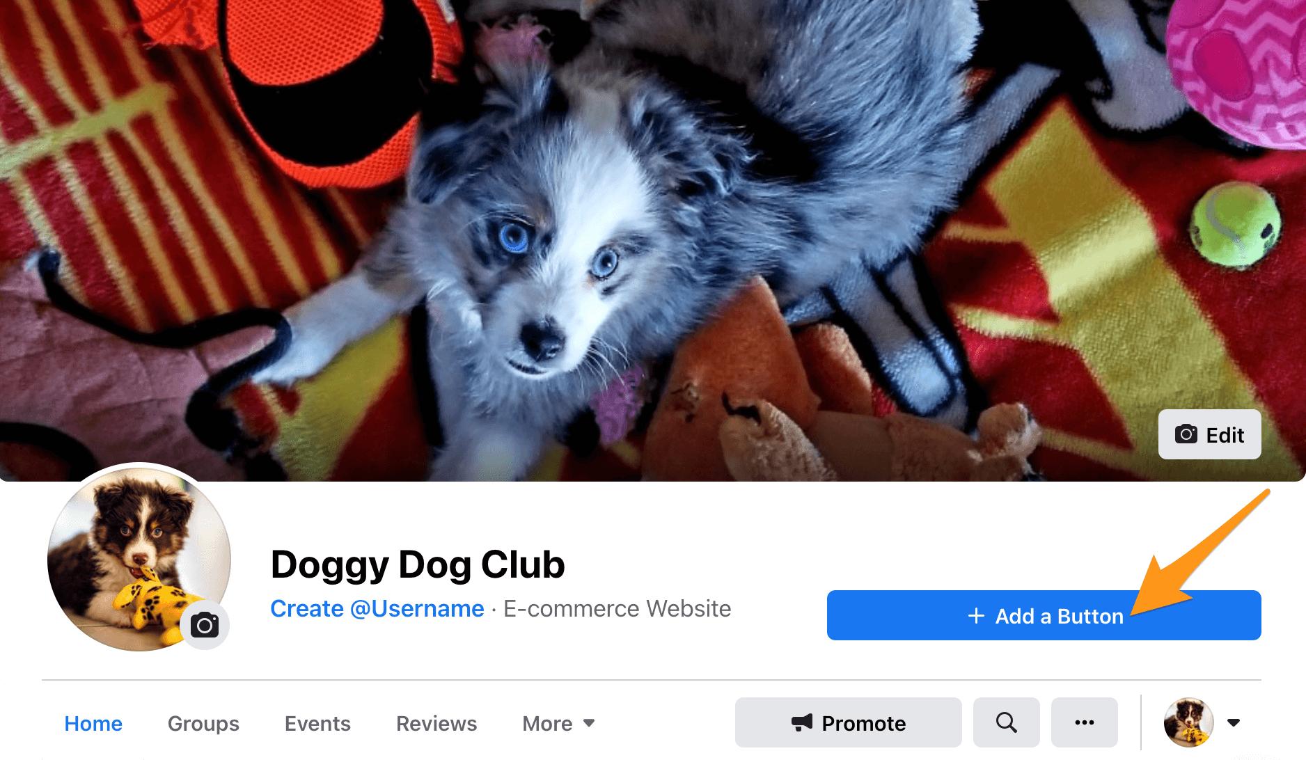 Add Button Facebook Page