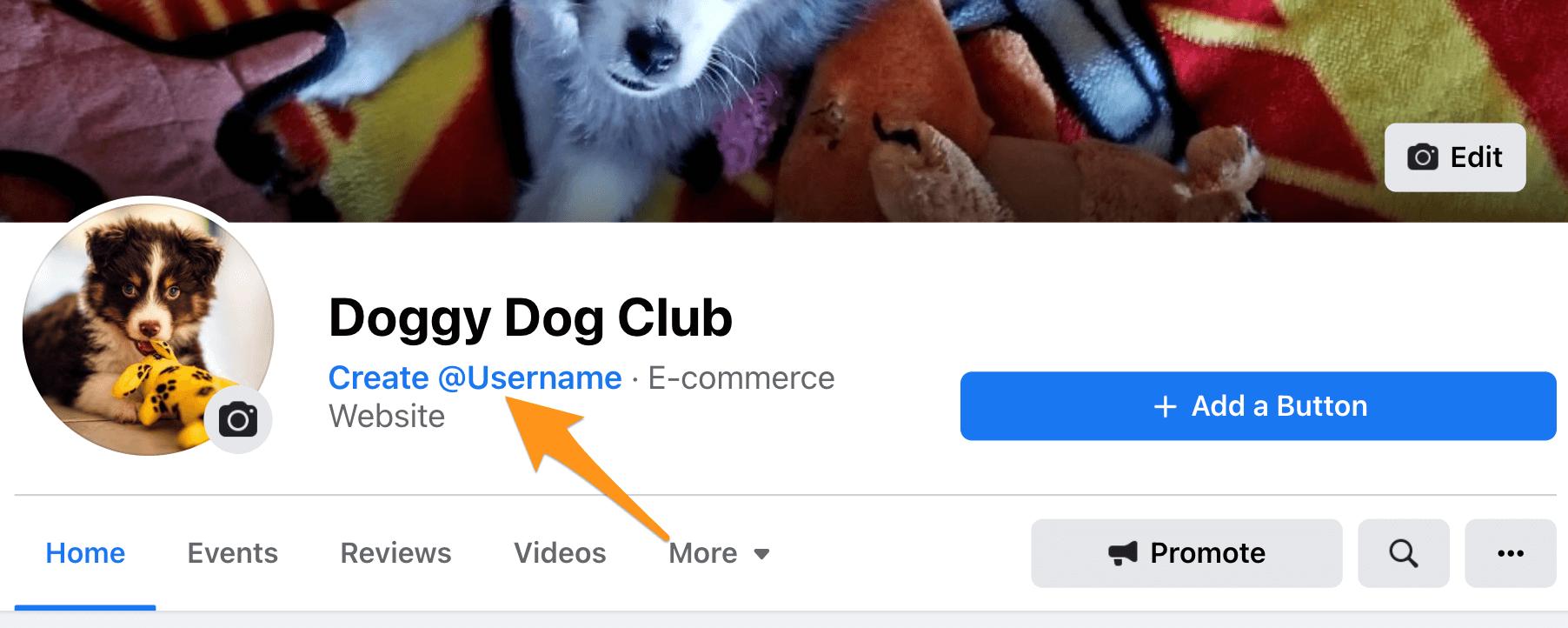 Facebook Page Username