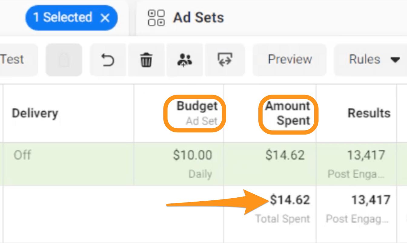 budget and amount spent columns