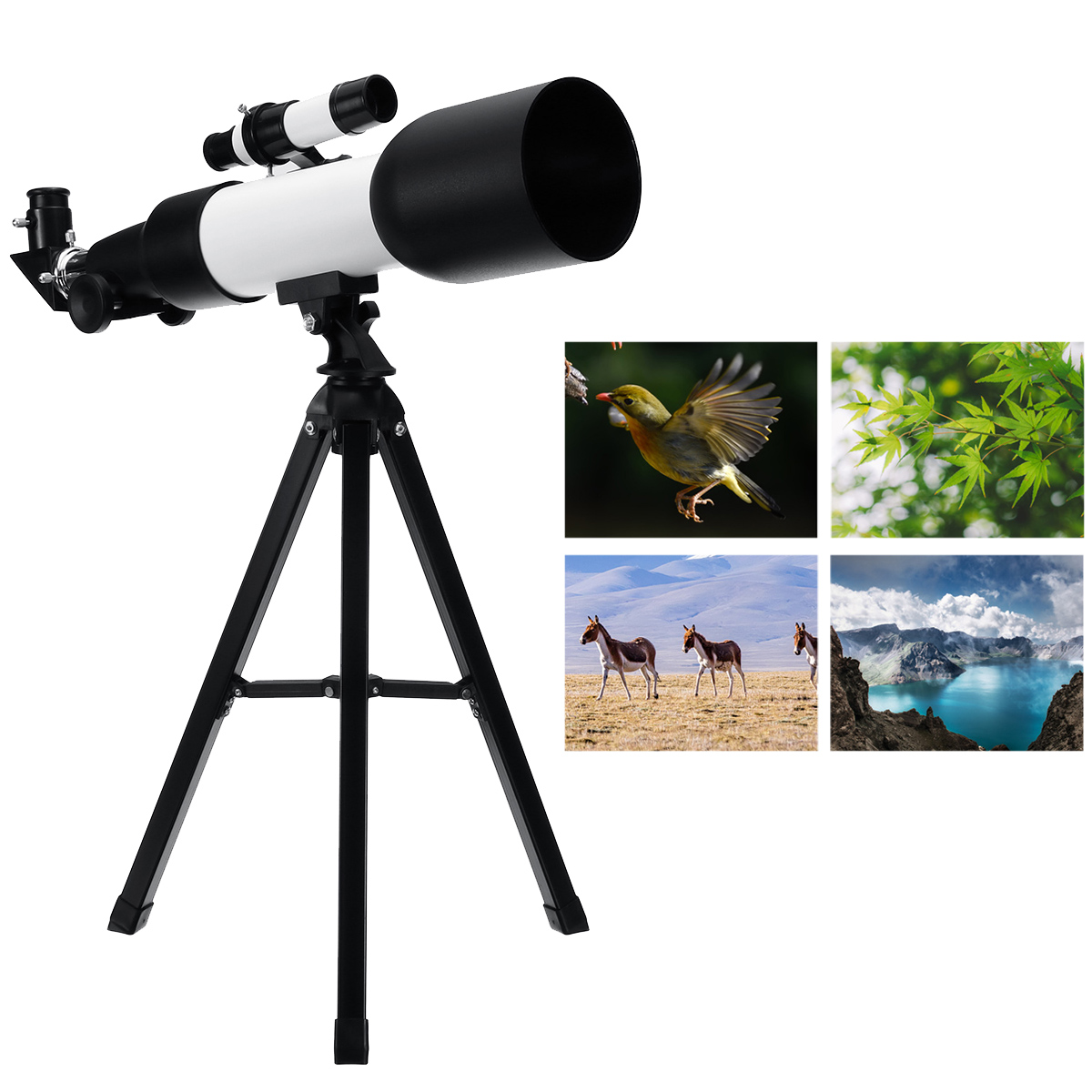 F360/60Mm HD Astronomical Telescope 90° Celestial Mirror Clear Image High Magnification Monocular Starry Sky Viewing with Tripod